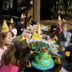 Jacob's birthday Party
